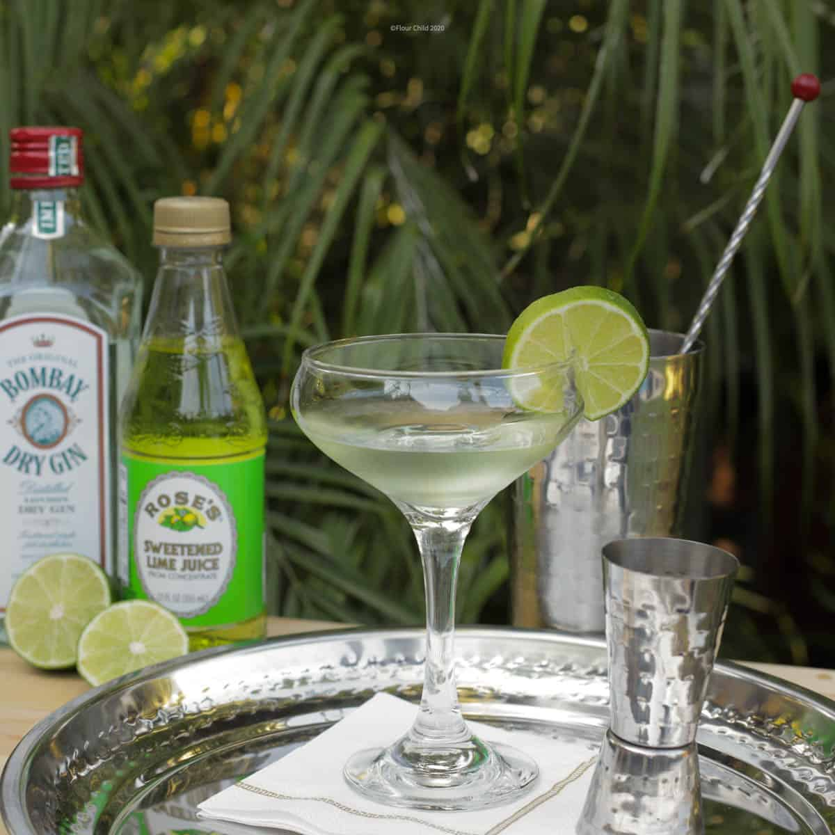 A gimlet cocktail in a coupe glass with dry gin and Rose's lime juice on a silver tray.