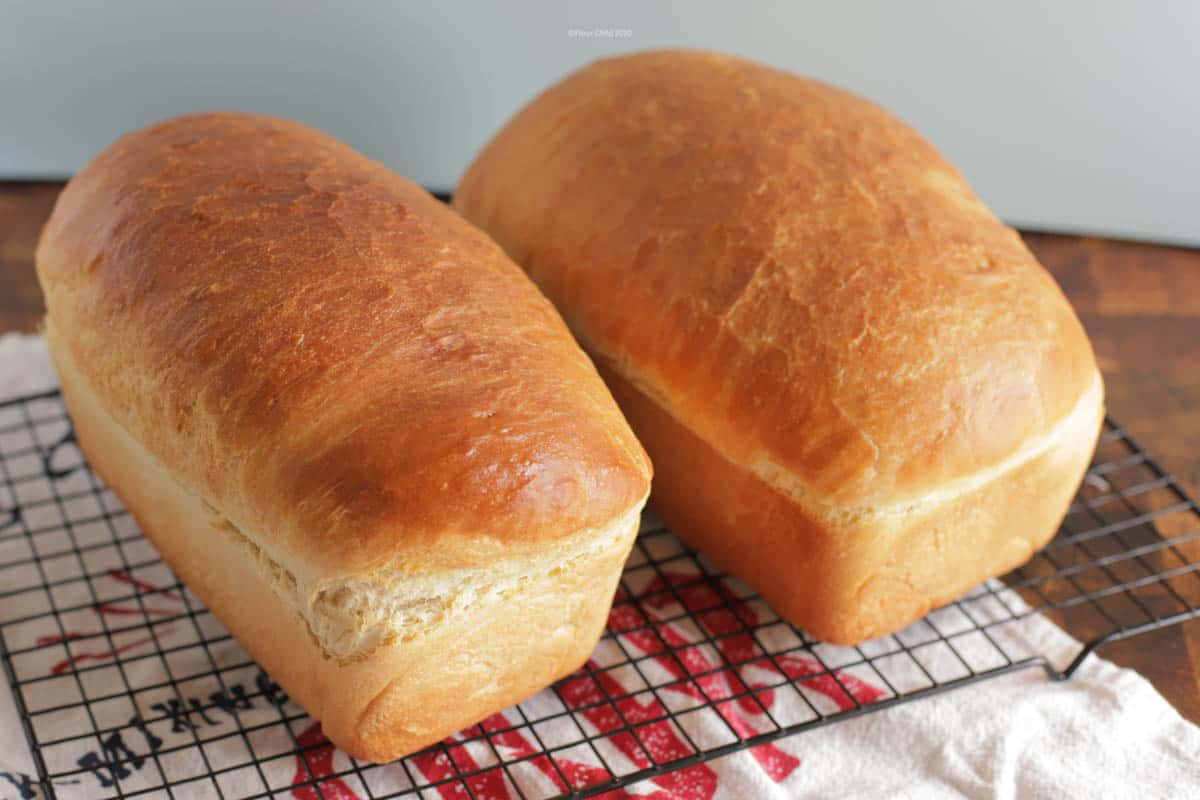 Two white bread loaves cooling on a rack.