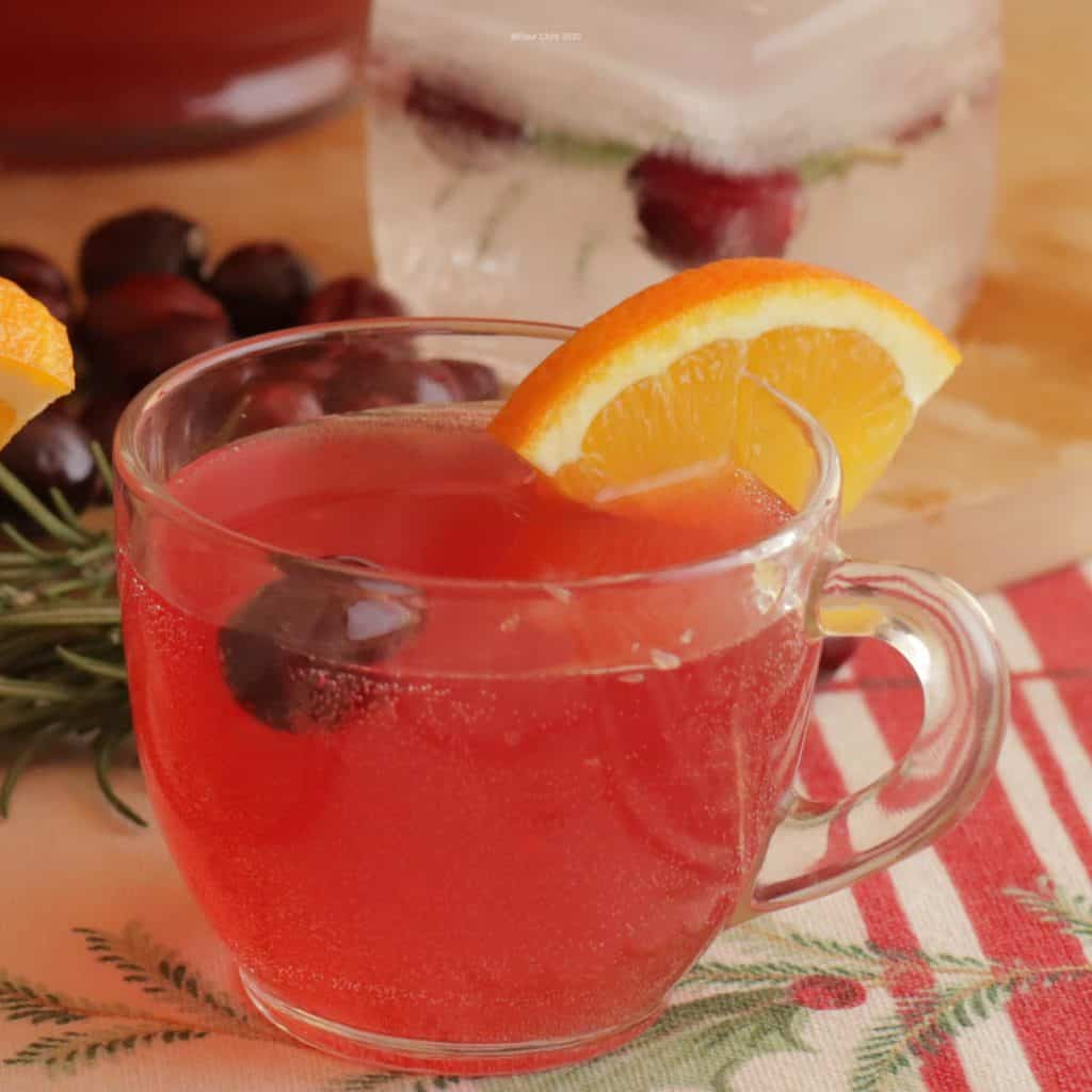 A punch glass filled with holiday punch and garnished with a sliced orange and cranberry.