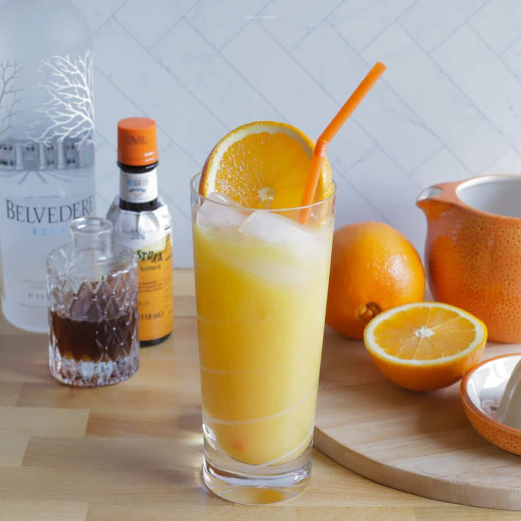 Screw driver cocktail in a tall glass with orange slice and orange straw.