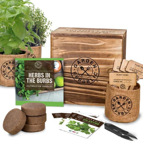 All items included in herb garden spread out on a table
